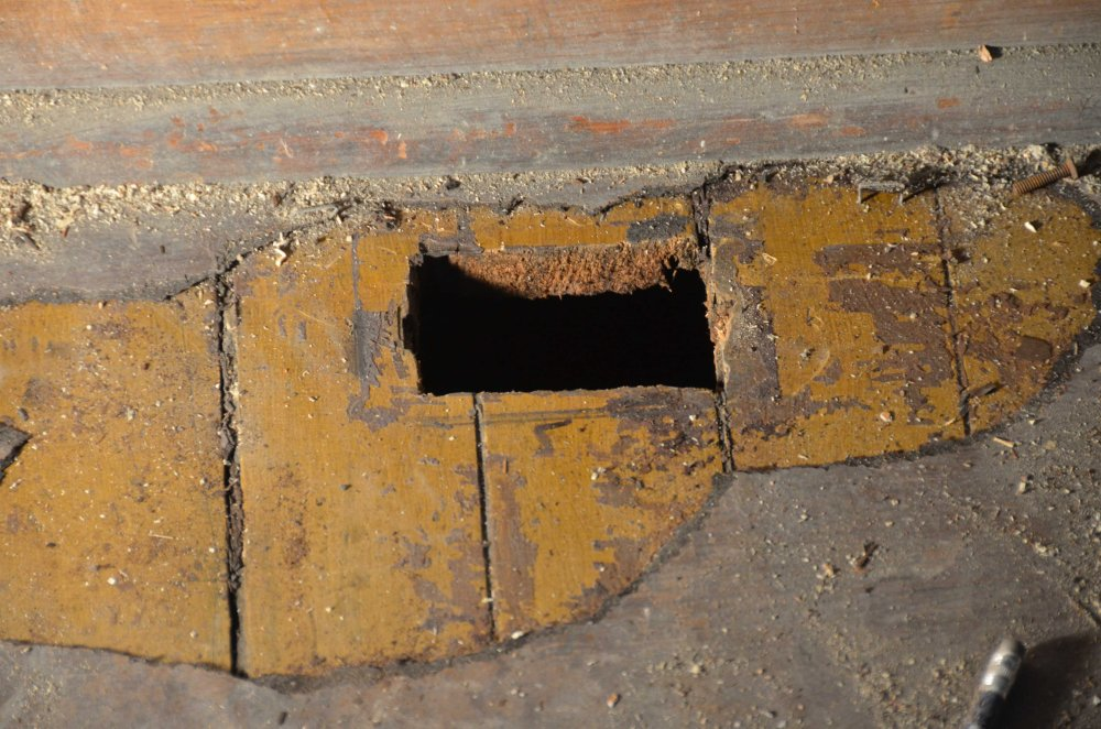 An old receptacle location in the floor.