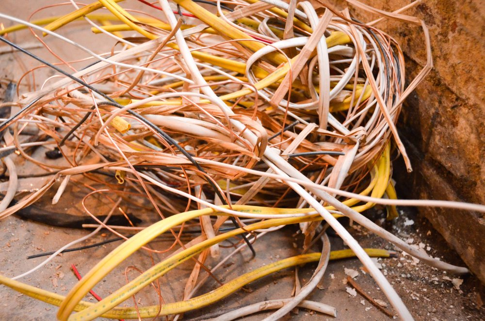 Nests of stripped cable remains
